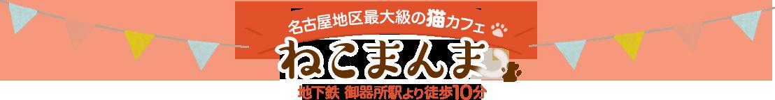 名古屋最大級の猫カフェ ねこまんま